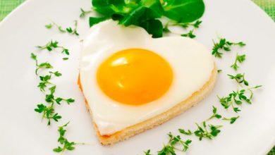 ovot 390x220 - Aproveite ao máximo os benefícios do ovo