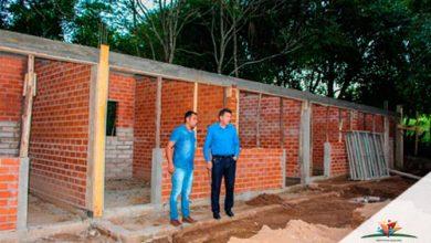 Campo Bom está preparando centro de bem estar animal 390x220 - Campo Bom está preparando centro de bem-estar animal