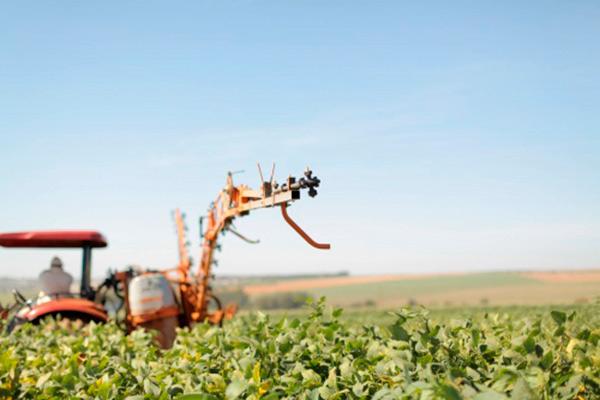agricultura familiar no RS - Mais biodiesel adicionado ao diesel é oportunidade para agricultura familiar no RS