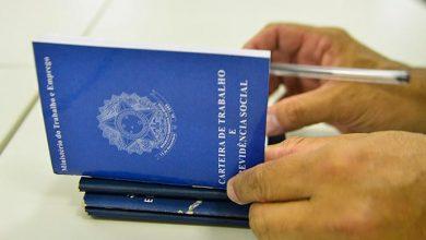 carteira de trabalho cópia 390x220 - Porto Alegre registra 40 vagas de final de ano pela Randstad