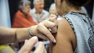 gripe vacina 390x220 - Mais da metade das mortes por influenza são de idosos
