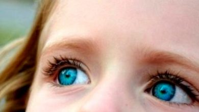 """olh 390x220 - Em dia de conscientização, ONU apresenta o lema """"Capacitando mulheres e meninas com autismo"""""""