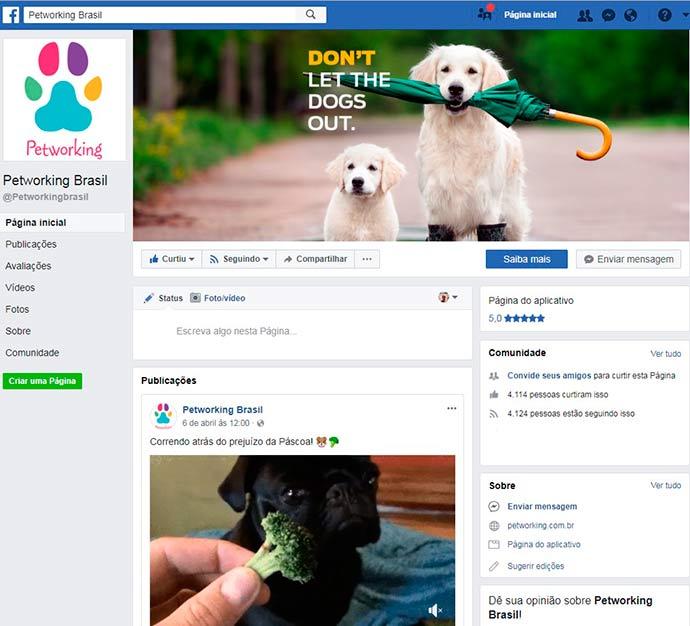 pet - Aplicativo ajuda a encontrar animais que fugiram de casa