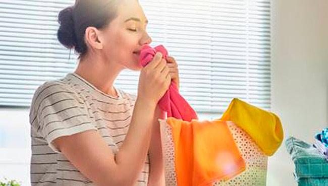 roupas - Dicas para passar as roupas com perfeição