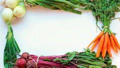 talos 390x220 - FAO desenvolve metodologia para mensurar desperdício de alimentos no mundo