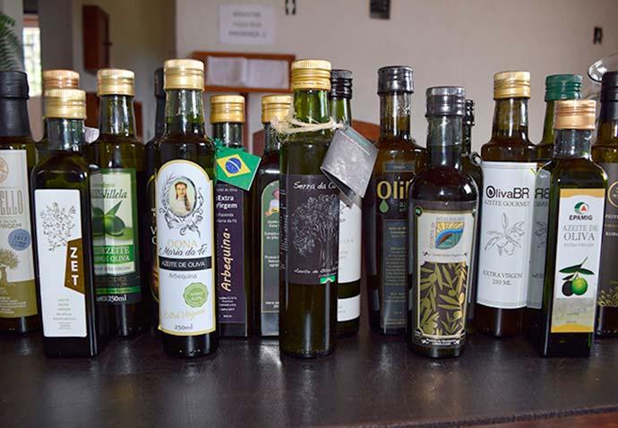 6 Azeites brasileiros - Primeira extração de azeite de oliva no país completa dez anos