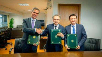 Photo of Projeto do PNUD e Brasil para setor algodoeiro na África receberá US$ 22,5 mi