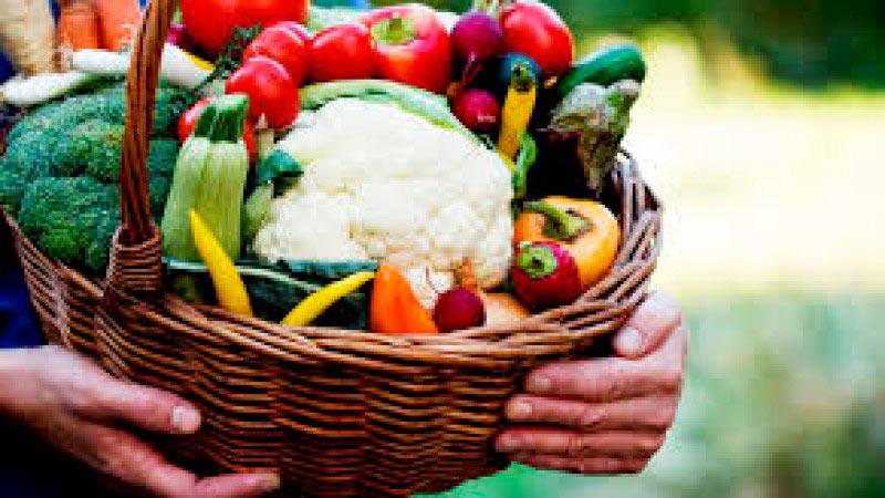 agricultura familiar - RS: alimentos da agricultura familiar nas penitenciárias