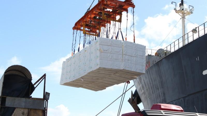 calulose - Exportação de celulose movimenta o Porto do Rio Grande
