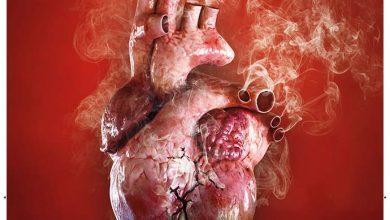 coração cigarro 390x220 - Dia Mundial sem Tabaco: campanha destaca relação do cigarro com doenças do coração