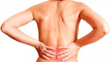dor nas costas6 390x220 - Dor nas costas é a doença que mais afasta trabalhadores no Brasil