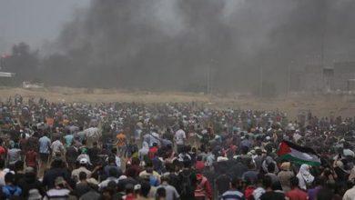 gaza 390x220 - Violência em Gaza: pelo menos 417 feridos no segundo dia de manifestações
