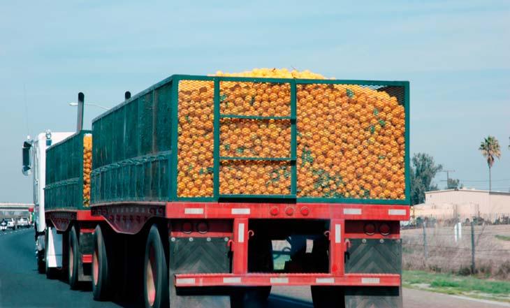 greve caminhoneiros comida - PROTESTE alerta: redobre a atenção aos alimentos comprados após a greve
