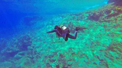 mergulho 390x220 - Modalidades esportivas que estão combatendo a poluição por plástico
