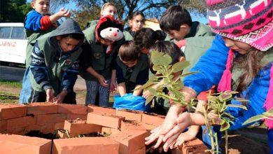 Estudantes plantam mudas às margens de arroio no bairro Canudos 390x220 - Estudantes plantam mudas às margens de arroio no bairro Canudos