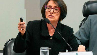Maria da Glória Guimarães dos Santos 390x220 - Serpro diz que não vendeu dados de brasileiros a site investigado