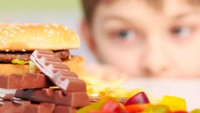 alim inf 390x220 - Como cuidar da alimentação das crianças durante as férias