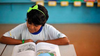 educação 390x220 - Educação pública de qualidade custaria até 5 vezes mais