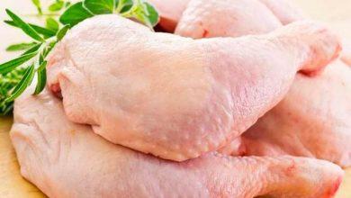 frango2 390x220 - Embargo da União Europeia derruba exportação brasileira de carne de frango