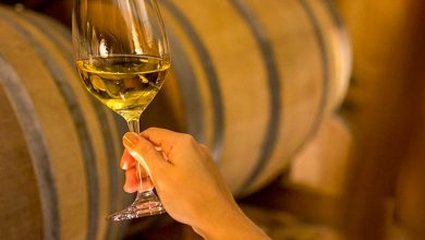 vinho brasil Reino Unido 390x220 - Wines of Brasil promove vinho brasileiro no Reino Unido