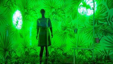 Photo of Léo Shehtman cria vitrine para o D&D Shopping
