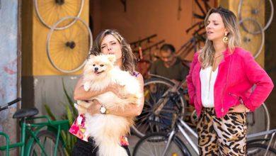 Arlete e Veronica procuram p cachorros ababdonados na Comunidade Foto Eduardo Lupianhez 55 390x220 - As Aventuras de Poliana - Resumo dos Capítulos 69 a 73 (20.08 a 24.08)