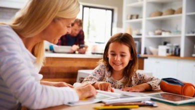 educ 390x220 - STF julga nesta quinta opção de educar os filhos em casa