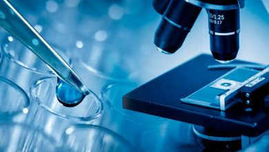 laborat 390x220 - Resistente a antibióticos, bactéria mycoplasma genitalium assusta especialistas