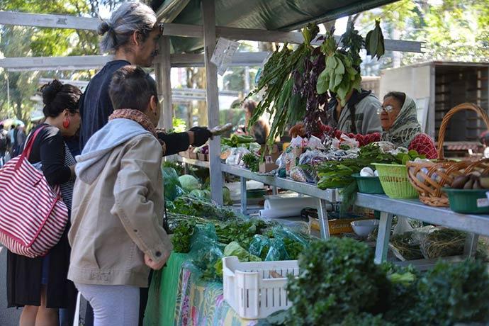 organico - Produção orgânica cresce no país