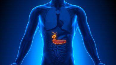 vesícula 390x220 - Saiba mais sobre as doenças da vesícula