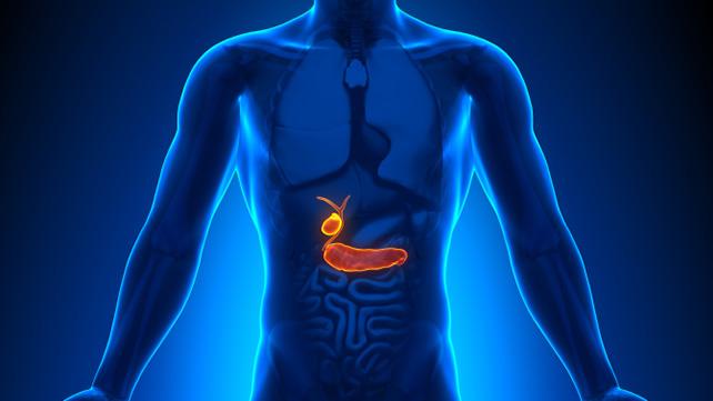 vesícula - Saiba mais sobre as doenças da vesícula