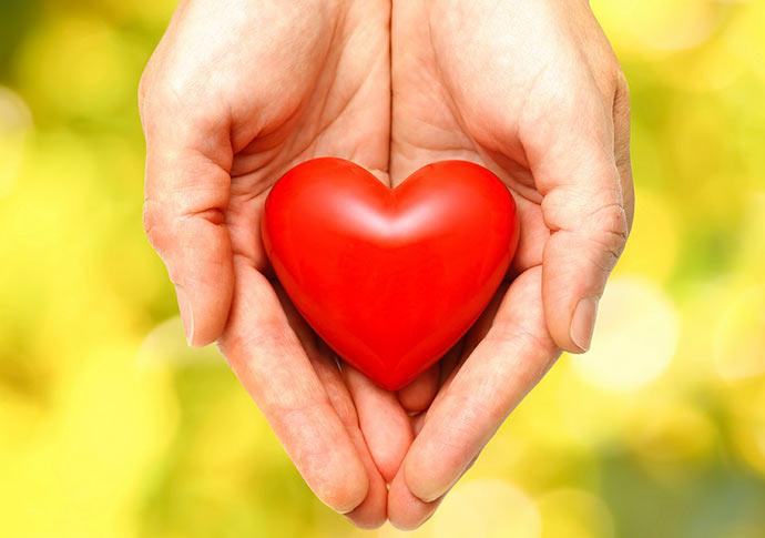 Coração3 - Nutrientes que fazem bem ao coração