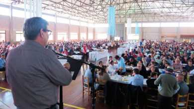 Dia de Campo sobre Fruticultura atrai grande público em Veranópolis 390x220 - Dia de Campo sobre Fruticultura atrai grande público em Veranópolis