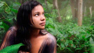Populações indígenas da Amazônia 390x220 - Índios afetados pelo clima pedempolíticas de prevenção