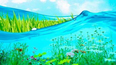 agua 390x220 - Proteção de aquíferos em um contexto sustentável