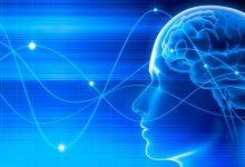 neuro 1 220x150 - Terapia com eletrodos cerebrais pode diminuir sintomas do Parkinson