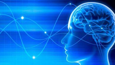 neuro 1 390x220 - Terapia com eletrodos cerebrais pode diminuir sintomas do Parkinson