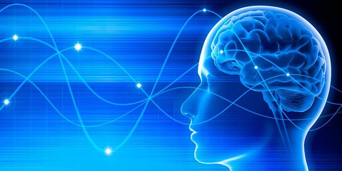 neuro 1 - Terapia com eletrodos cerebrais pode diminuir sintomas do Parkinson