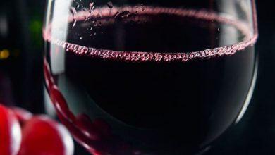 vinho1 390x220 - Wine South America acontece em Bento Gonçalves de 26 a 29 de setembro