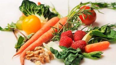 Agricultura para alimentar o mundo 390x220 - Planeta terá que alimentar 10 bilhões de pessoas daqui a 30 anos