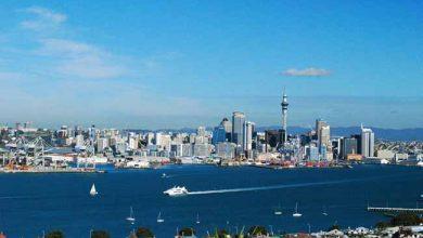 Auckland New Zealand 390x220 - Brasileiros na Nova Zelândia já começaram a votar