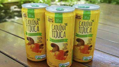 Cajuína em lata 390x220 - Embrapa e empresas lançamcajuína orgânica em lata