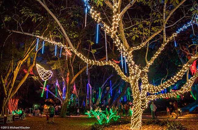 Flórida 28 - Natal iluminado é atração da Flórida