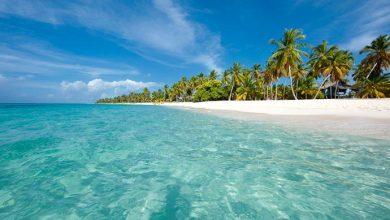 Isla Saona 3 390x220 - Onde ir e o que fazer na República Dominicana