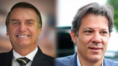 Jair Bolsonaro Fernandon Haddad 390x220 - Bolsonaro e Haddad disputam 2º turno