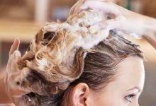 cabelos 220x150 - Lavar o cabelo diariamente é indicado para cabelos oleosos