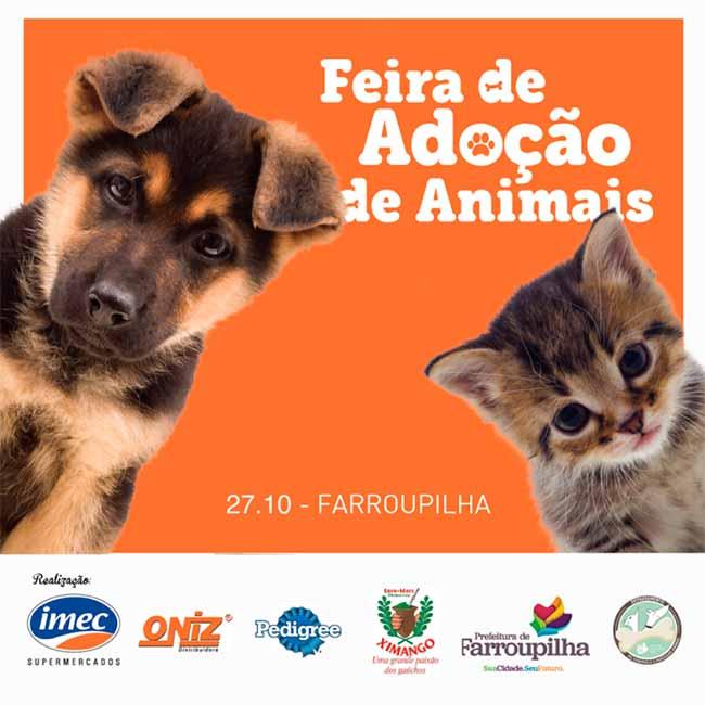 feira animais - Feira de adoção de animais neste sábado em Farroupilha