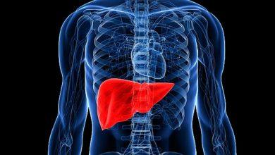 figado 390x220 - As doenças autoimunes do fígado