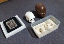 luzia 1 220x150 - Crânio de Luzia é encontrado no Museu Nacional