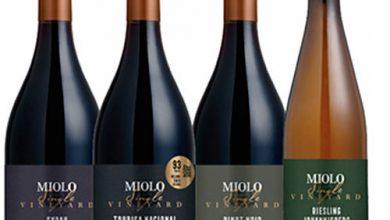 miolo9 390x220 - Adriano Miolo lança linha Single Vineyard em Porto Alegre